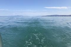 Blikkstille på fjorden